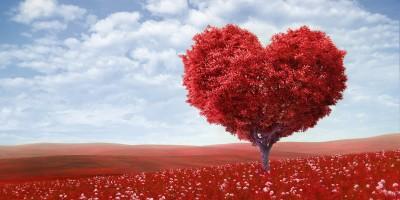 Четыре традиционных заблуждения о любви